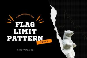 Flag Limit – The Most Profitable Forex Pattern